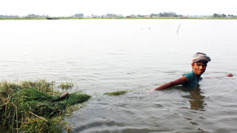 Översvämning i Bangladesh